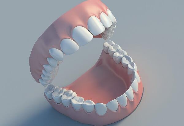 hàm răng người có bao nhiêu cái